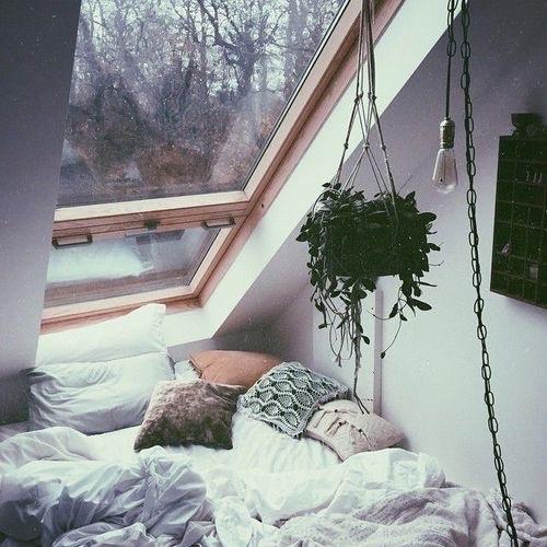 ventana-en-el-techo