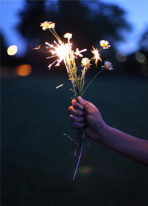 flowers-fire