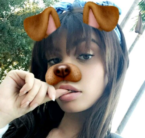 perro-snap