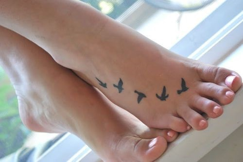 pies-aves