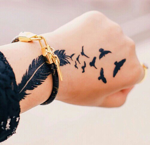 plumas-aves