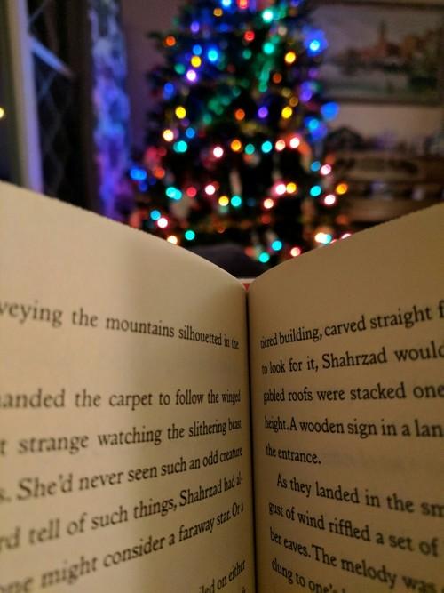 libro-navidad